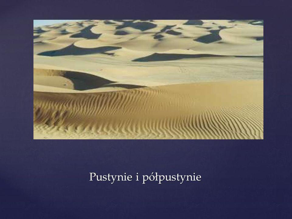Pustynie i półpustynie