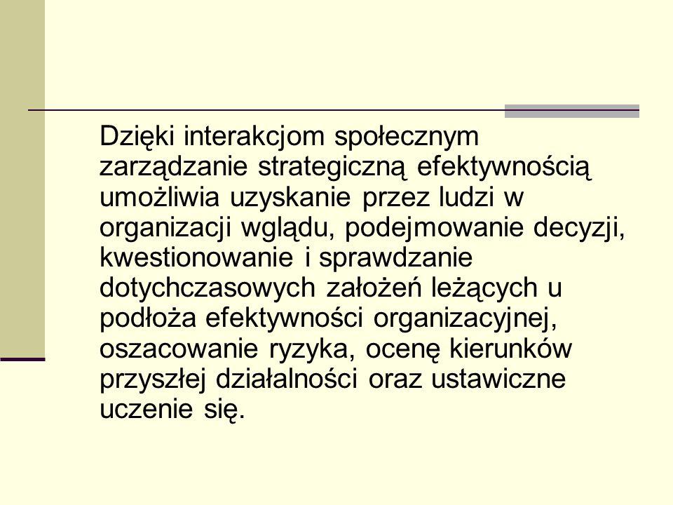 Dzięki interakcjom społecznym zarządzanie strategiczną efektywnością umożliwia uzyskanie przez ludzi w organizacji wglądu, podejmowanie decyzji, kwestionowanie i sprawdzanie dotychczasowych założeń leżących u podłoża efektywności organizacyjnej, oszacowanie ryzyka, ocenę kierunków przyszłej działalności oraz ustawiczne uczenie się.