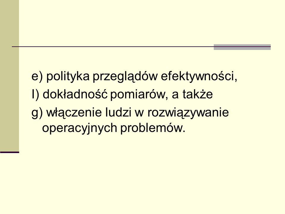 e) polityka przeglądów efektywności,