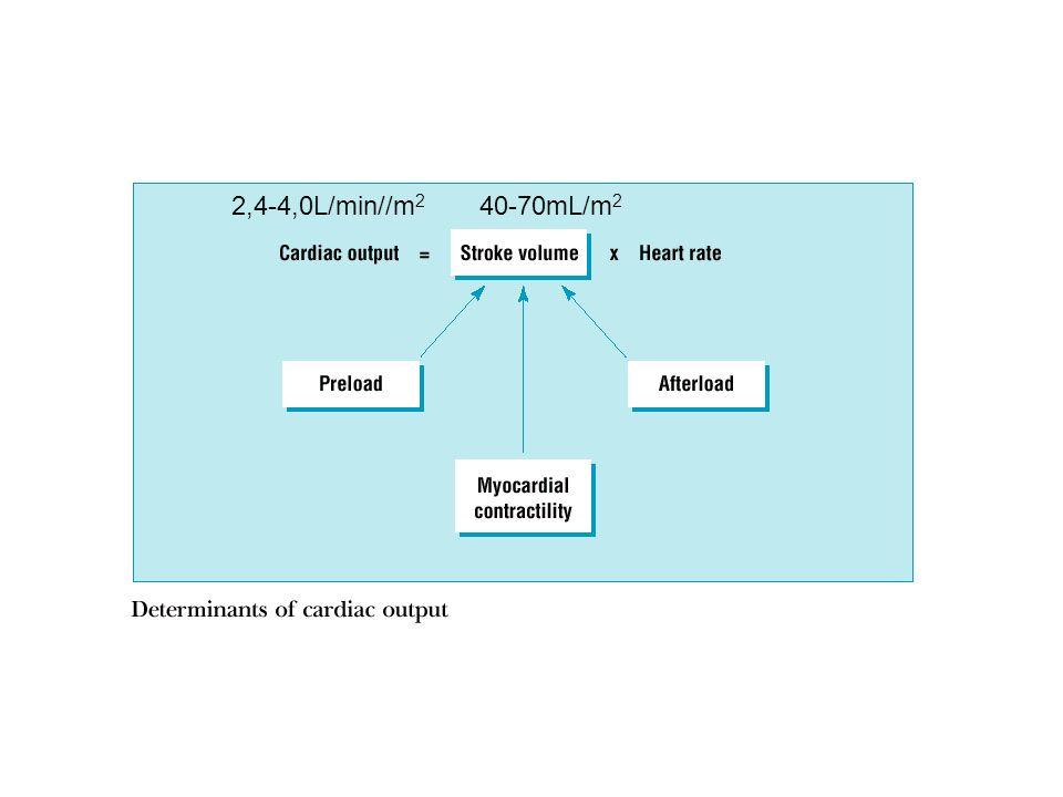 2,4-4,0L/min//m2 40-70mL/m2
