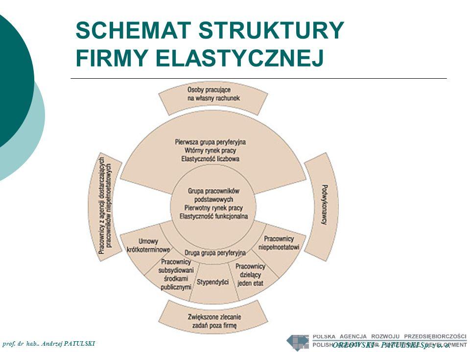 SCHEMAT STRUKTURY FIRMY ELASTYCZNEJ