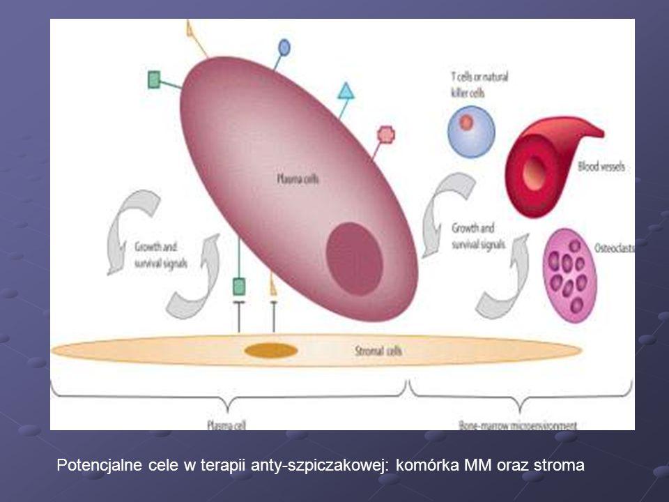 Potencjalne cele w terapii anty-szpiczakowej: komórka MM oraz stroma