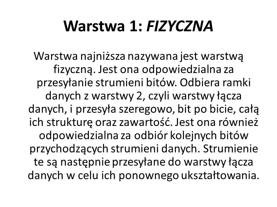 Warstwa 1: FIZYCZNA