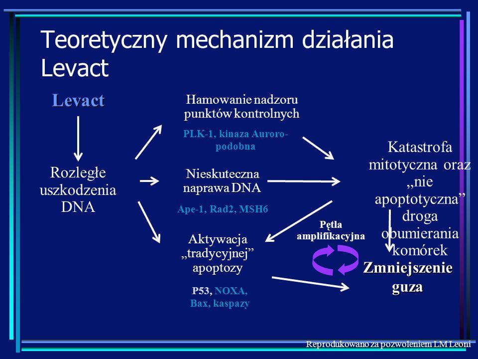 Teoretyczny mechanizm działania Levact