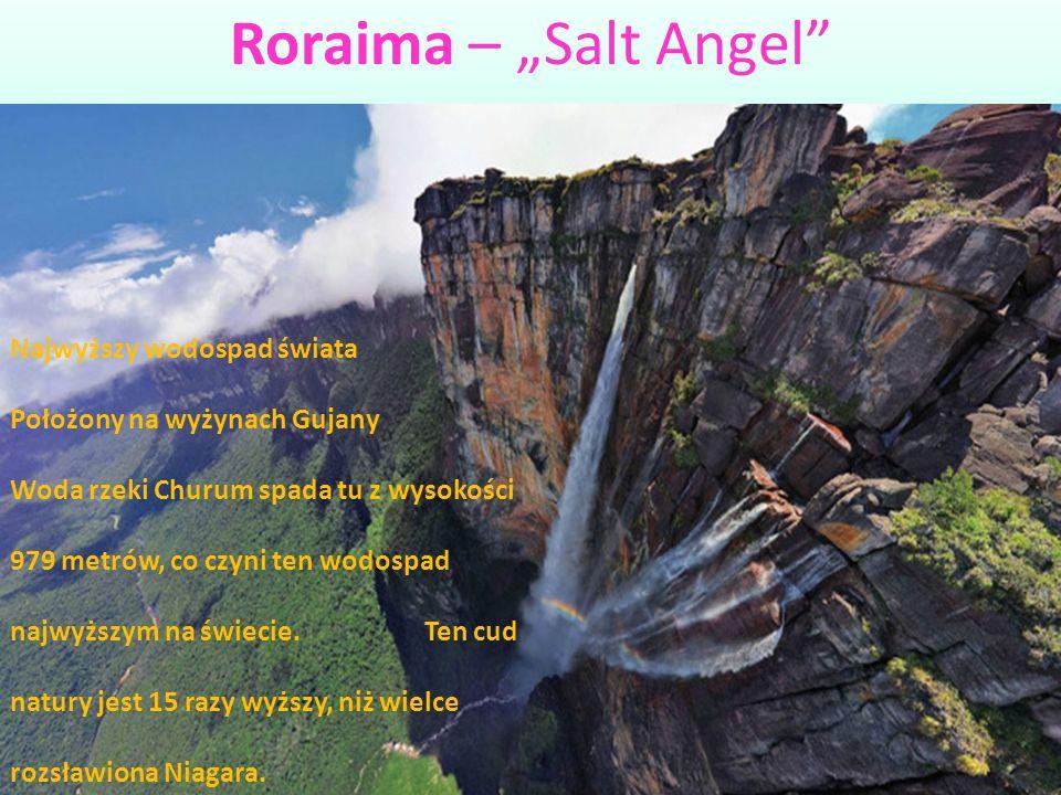 """Roraima – """"Salt Angel Najwyższy wodospad świata"""