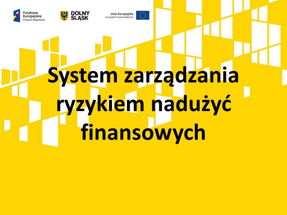 System zarządzania ryzykiem nadużyć finansowych