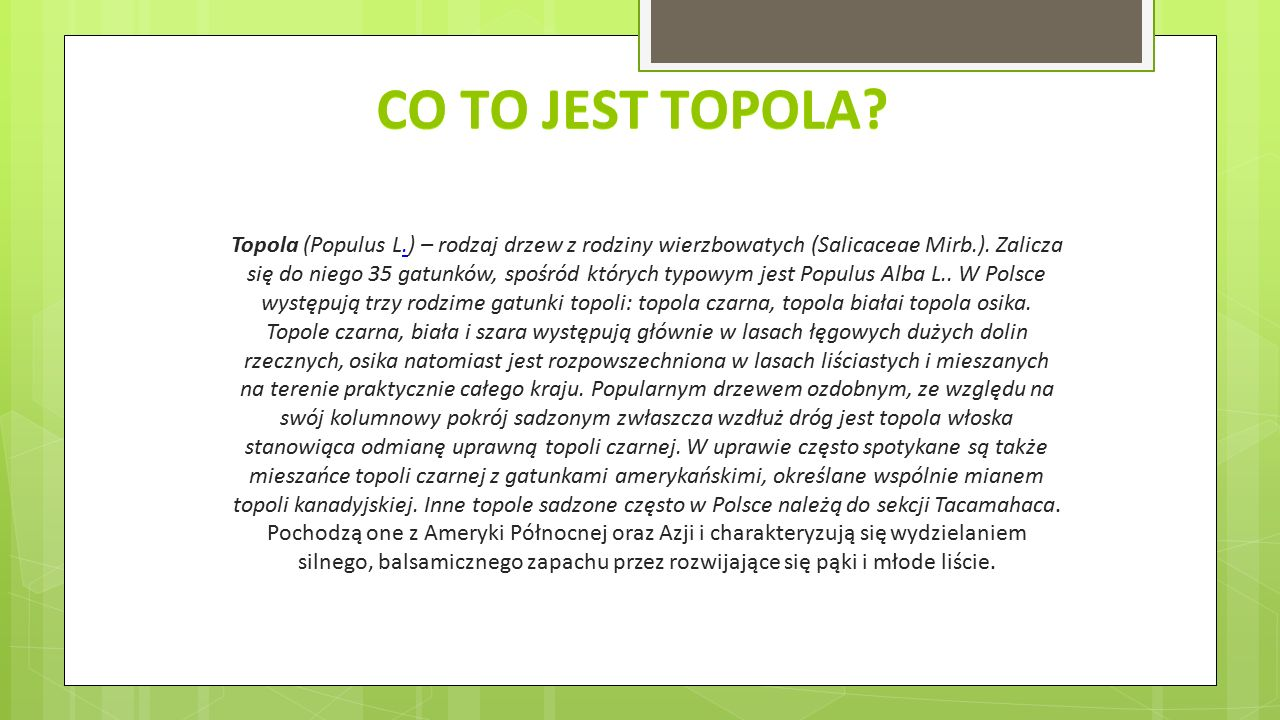 Co to jest topola