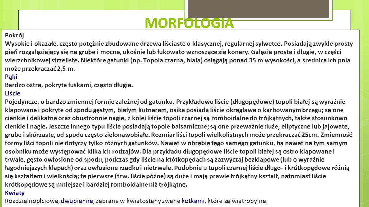 Morfologia Pokrój.
