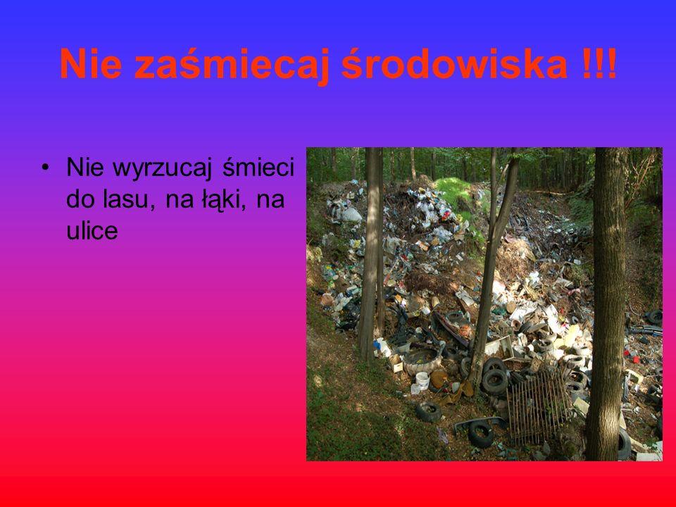 Nie zaśmiecaj środowiska !!!