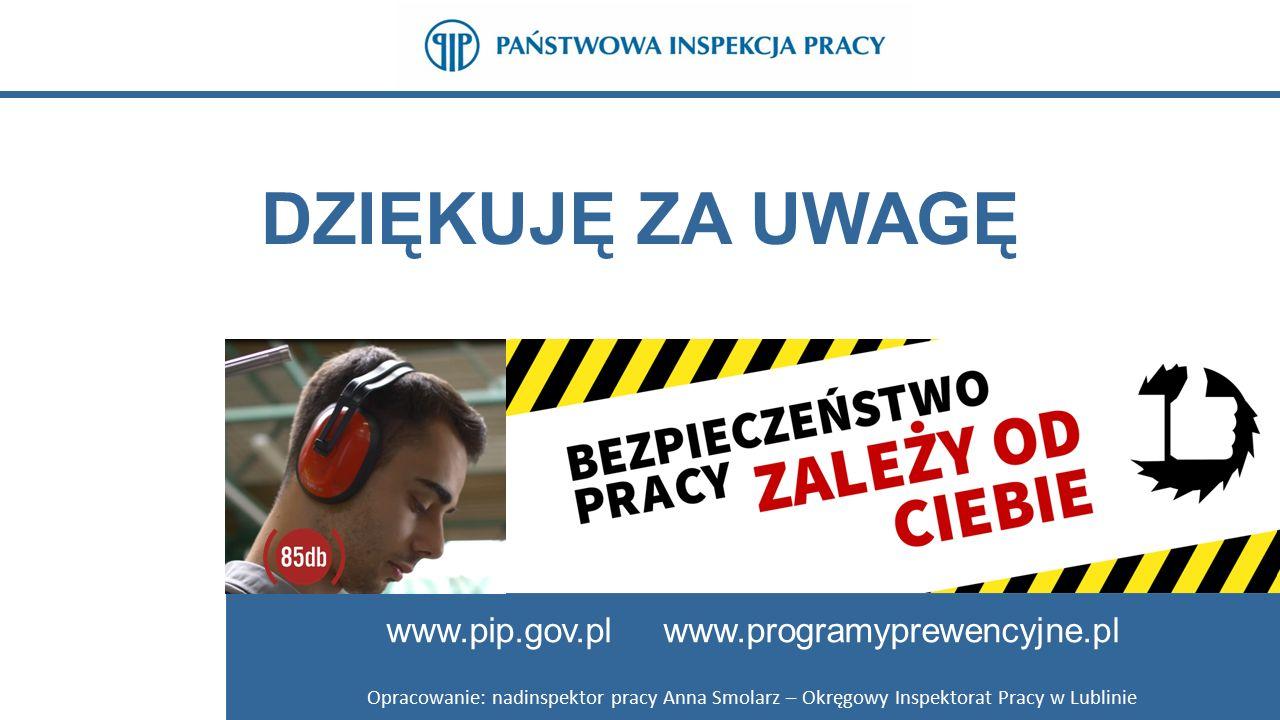 DZIĘKUJĘ ZA UWAGĘ www.pip.gov.pl www.programyprewencyjne.pl