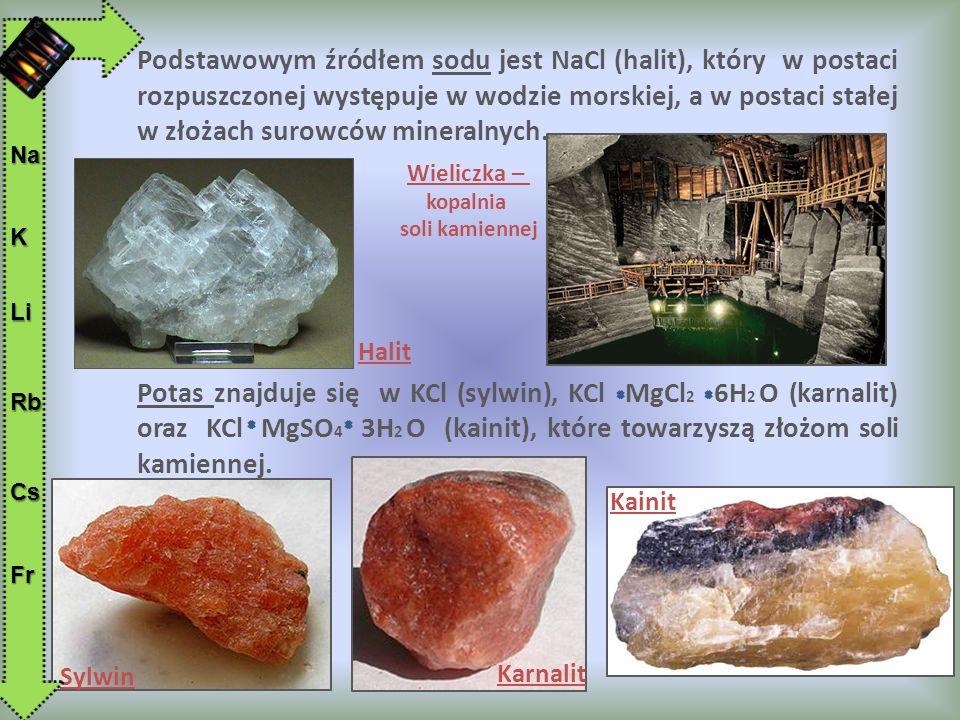 Podstawowym źródłem sodu jest NaCl (halit), który w postaci rozpuszczonej występuje w wodzie morskiej, a w postaci stałej w złożach surowców mineralnych.