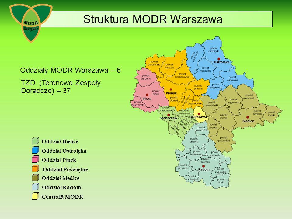 Struktura MODR Warszawa