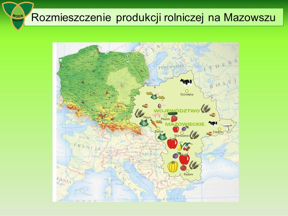 Rozmieszczenie produkcji rolniczej na Mazowszu