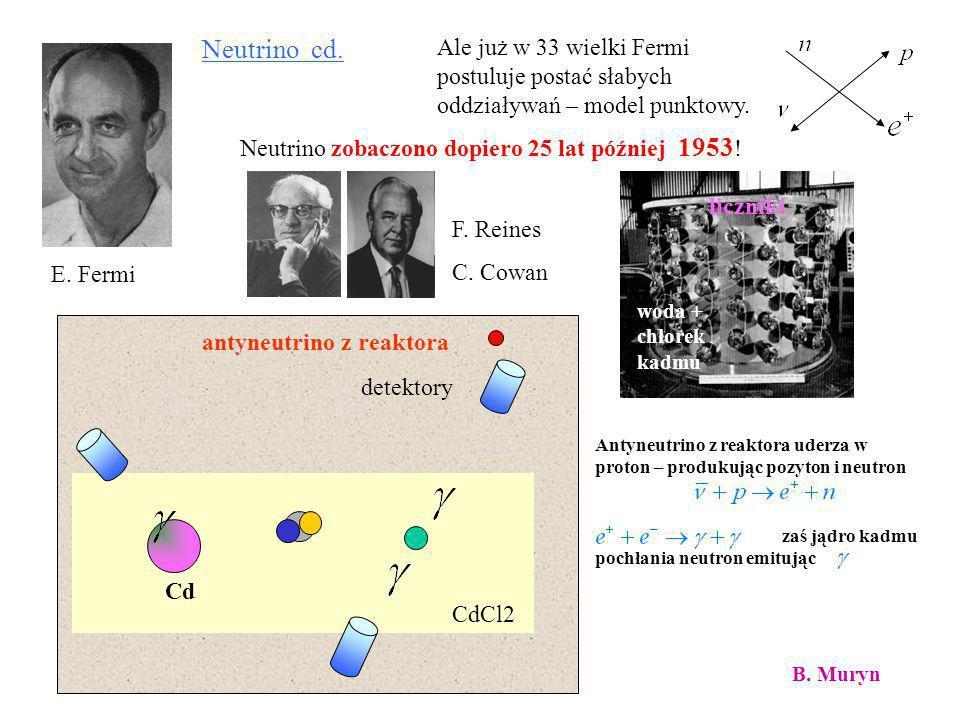 Neutrino cd.Ale już w 33 wielki Fermi postuluje postać słabych oddziaływań – model punktowy. Neutrino zobaczono dopiero 25 lat później 1953!