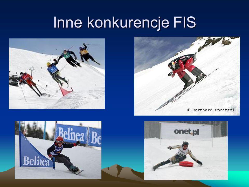 Inne konkurencje FIS