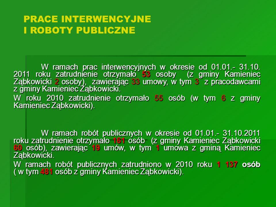 PRACE INTERWENCYJNE I ROBOTY PUBLICZNE