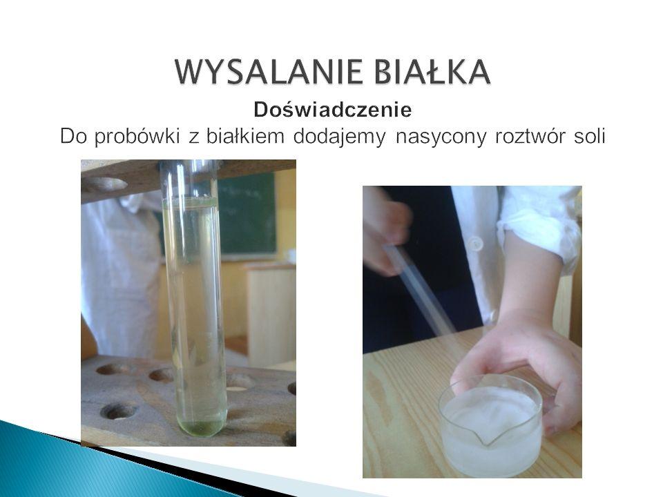 WYSALANIE BIAŁKA Doświadczenie Do probówki z białkiem dodajemy nasycony roztwór soli