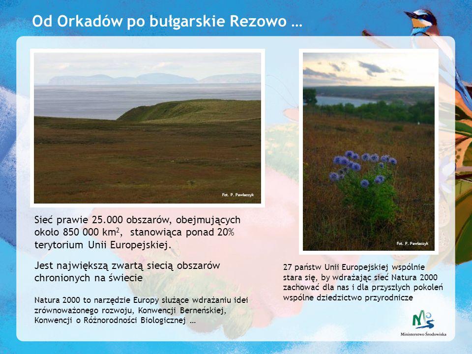 Od Orkadów po bułgarskie Rezowo …
