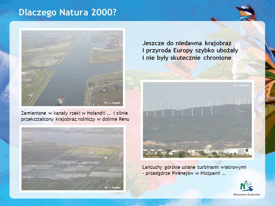 Dlaczego Natura 2000 Jeszcze do niedawna krajobraz i przyroda Europy szybko ubożały i nie były skutecznie chronione.