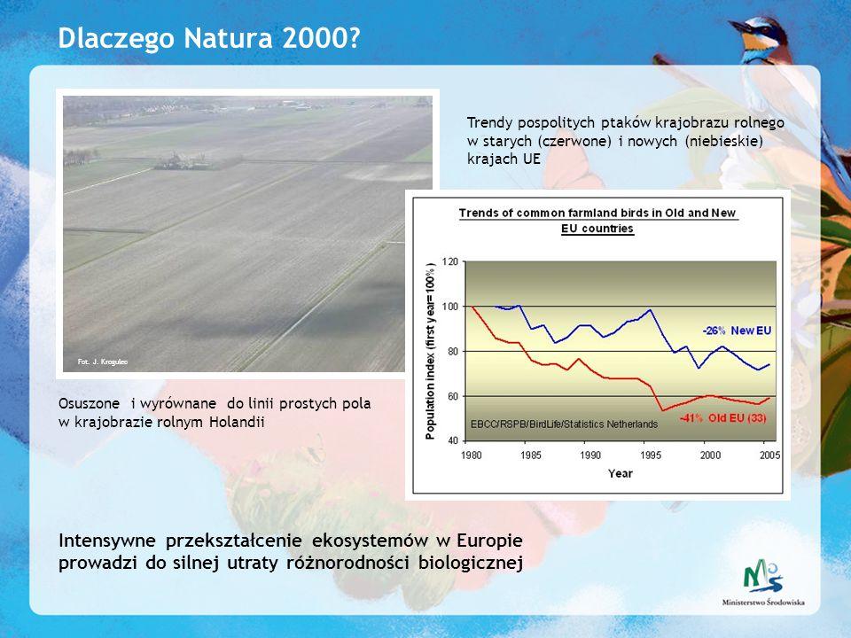 Dlaczego Natura 2000 Trendy pospolitych ptaków krajobrazu rolnego w starych (czerwone) i nowych (niebieskie) krajach UE.
