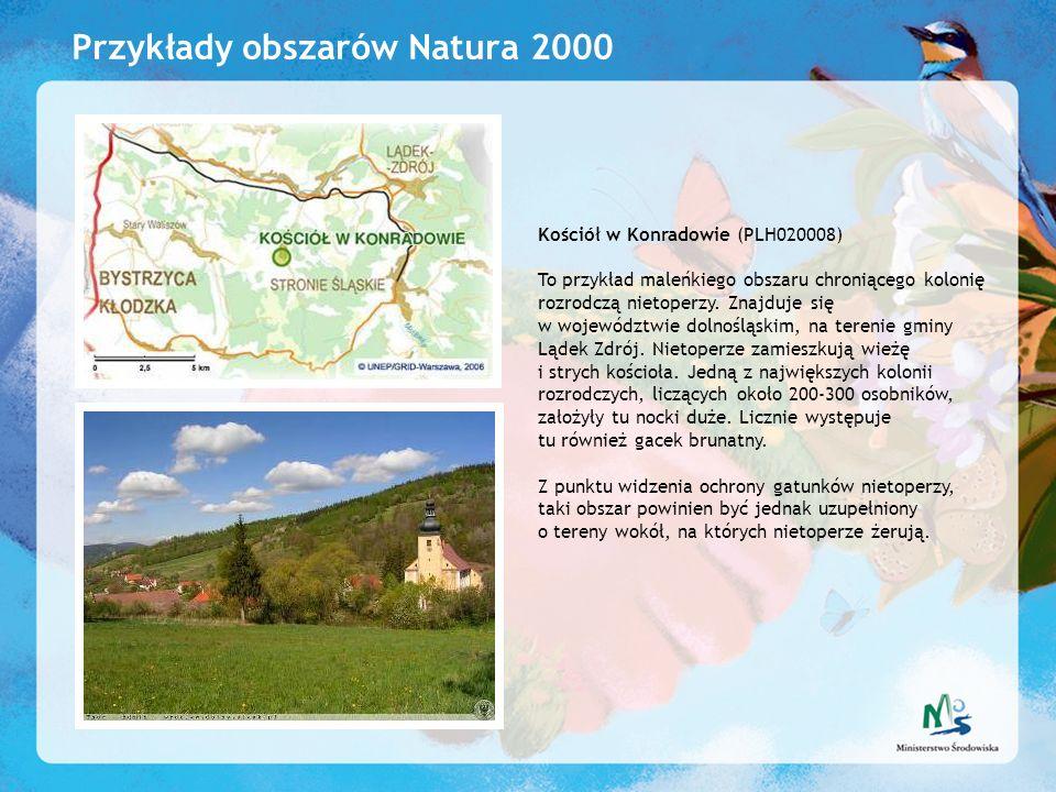 Przykłady obszarów Natura 2000