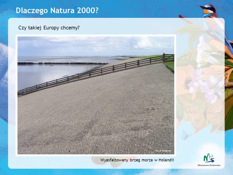 Dlaczego Natura 2000 Czy takiej Europy chcemy