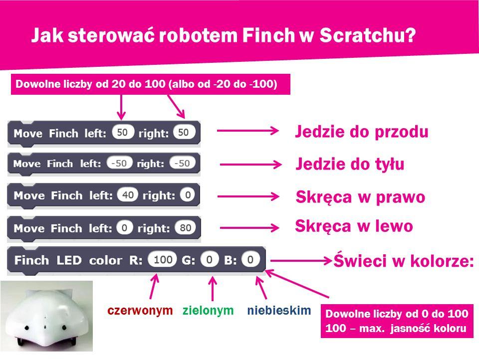 Jak sterować robotem Finch w Scratchu