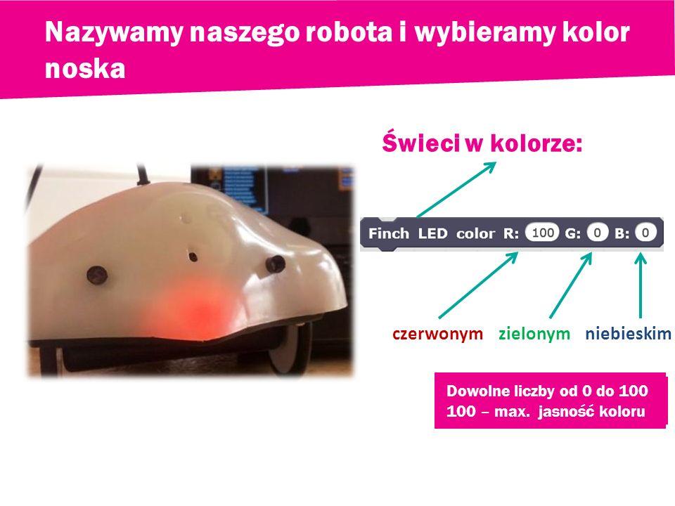 Nazywamy naszego robota i wybieramy kolor noska