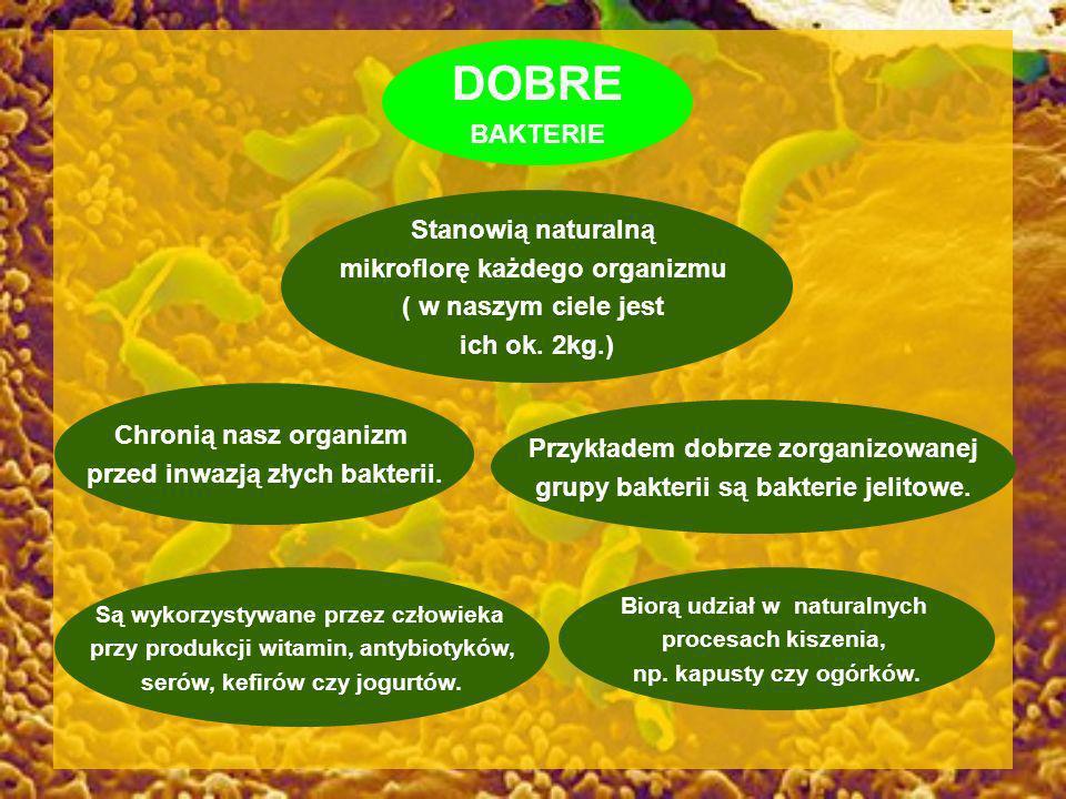 DOBRE BAKTERIE Stanowią naturalną mikroflorę każdego organizmu