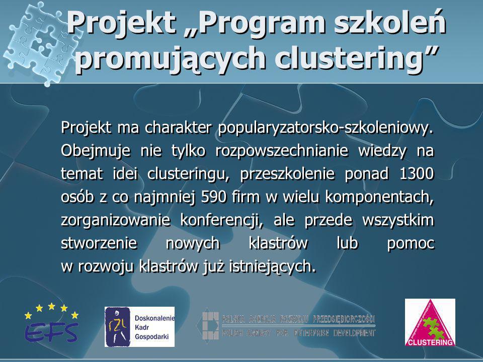 "Projekt ""Program szkoleń promujących clustering"
