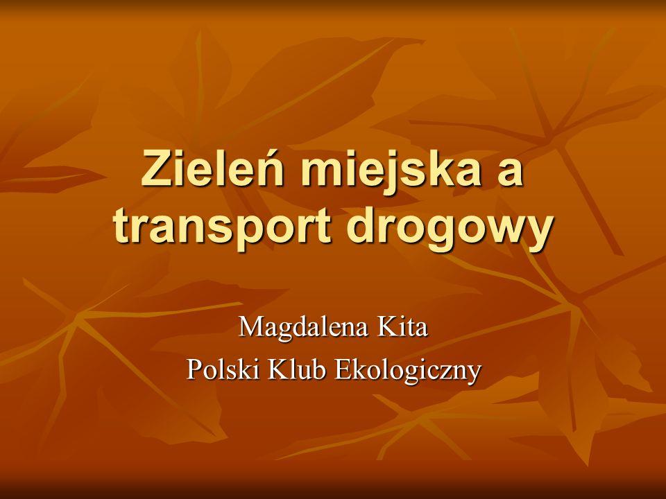 Zieleń miejska a transport drogowy