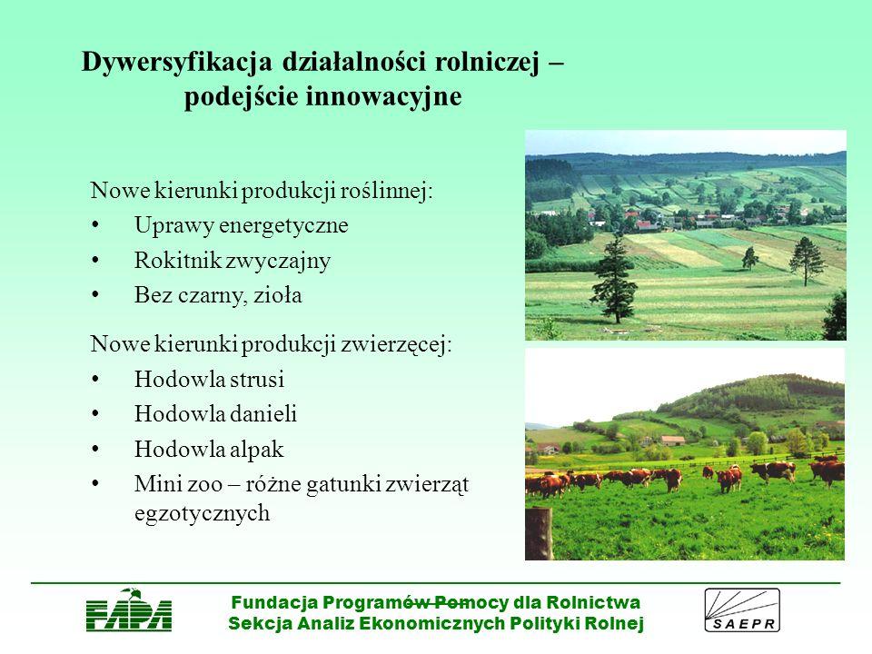 Dywersyfikacja działalności rolniczej – podejście innowacyjne