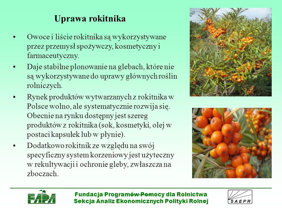 Uprawa rokitnika Owoce i liście rokitnika są wykorzystywane przez przemysł spożywczy, kosmetyczny i farmaceutyczny.