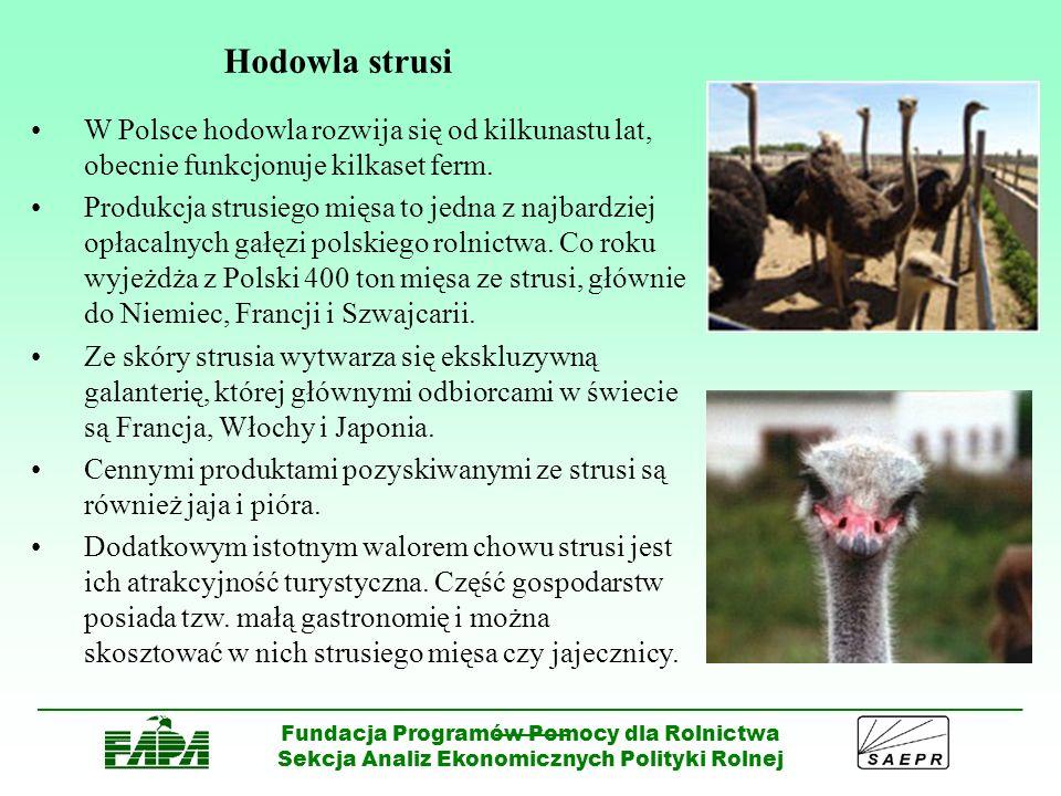 Hodowla strusi W Polsce hodowla rozwija się od kilkunastu lat, obecnie funkcjonuje kilkaset ferm.