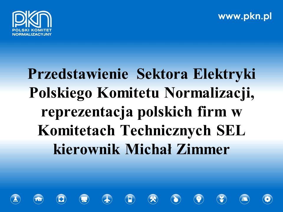 Przedstawienie Sektora Elektryki Polskiego Komitetu Normalizacji, reprezentacja polskich firm w Komitetach Technicznych SEL kierownik Michał Zimmer