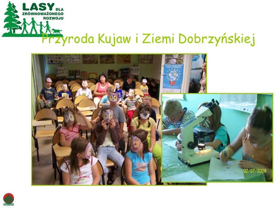 Przyroda Kujaw i Ziemi Dobrzyńskiej