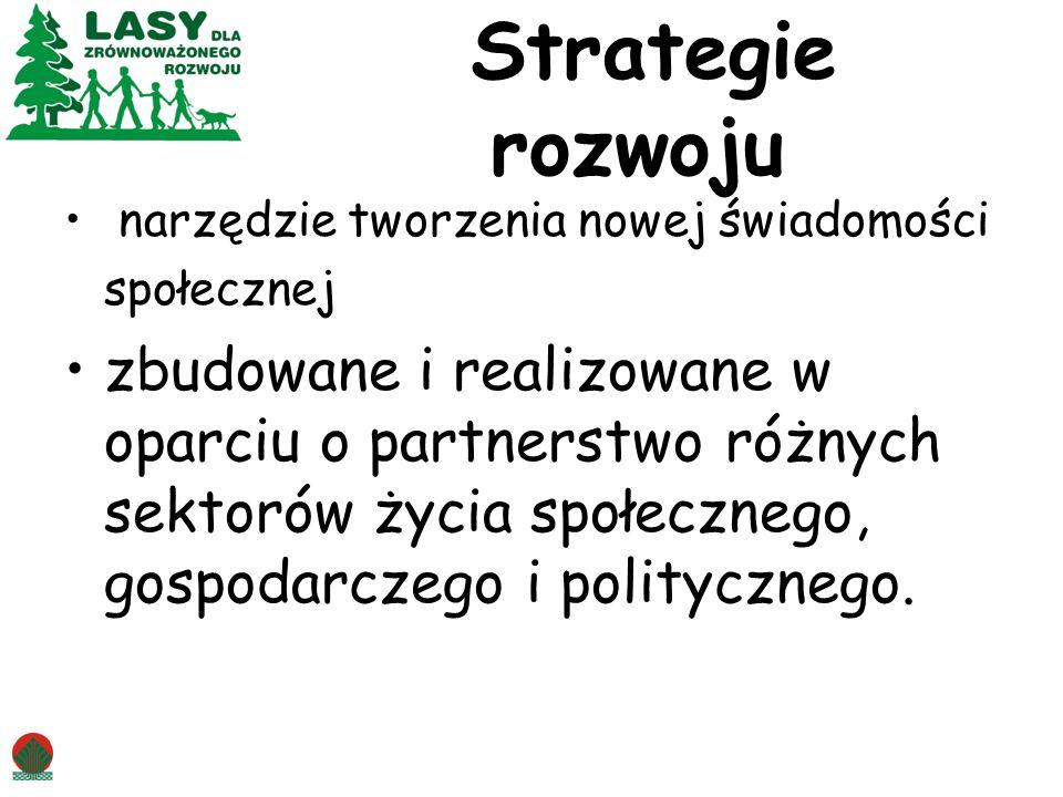 Strategie rozwoju narzędzie tworzenia nowej świadomości społecznej.