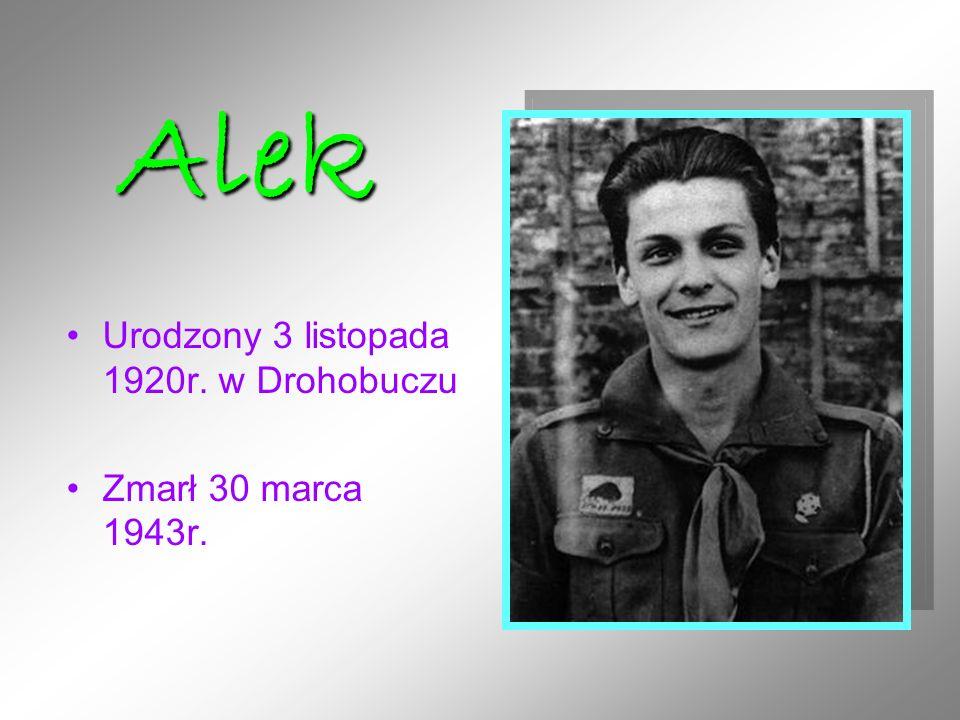 Alek Urodzony 3 listopada 1920r. w Drohobuczu Zmarł 30 marca 1943r.