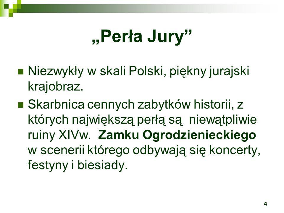 """""""Perła Jury Niezwykły w skali Polski, piękny jurajski krajobraz."""