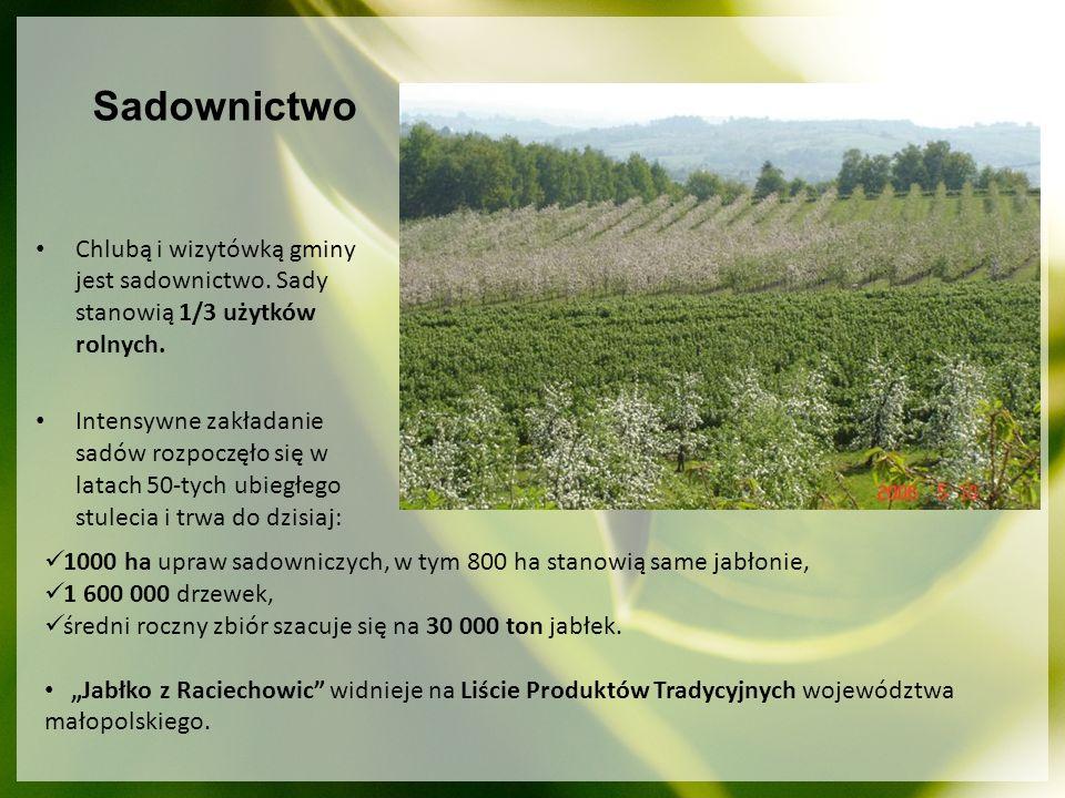 Sadownictwo Chlubą i wizytówką gminy jest sadownictwo. Sady stanowią 1/3 użytków rolnych.