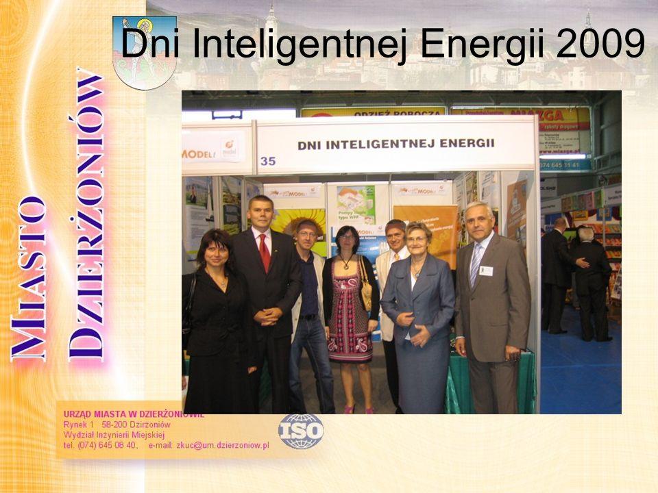 Dni Inteligentnej Energii 2009
