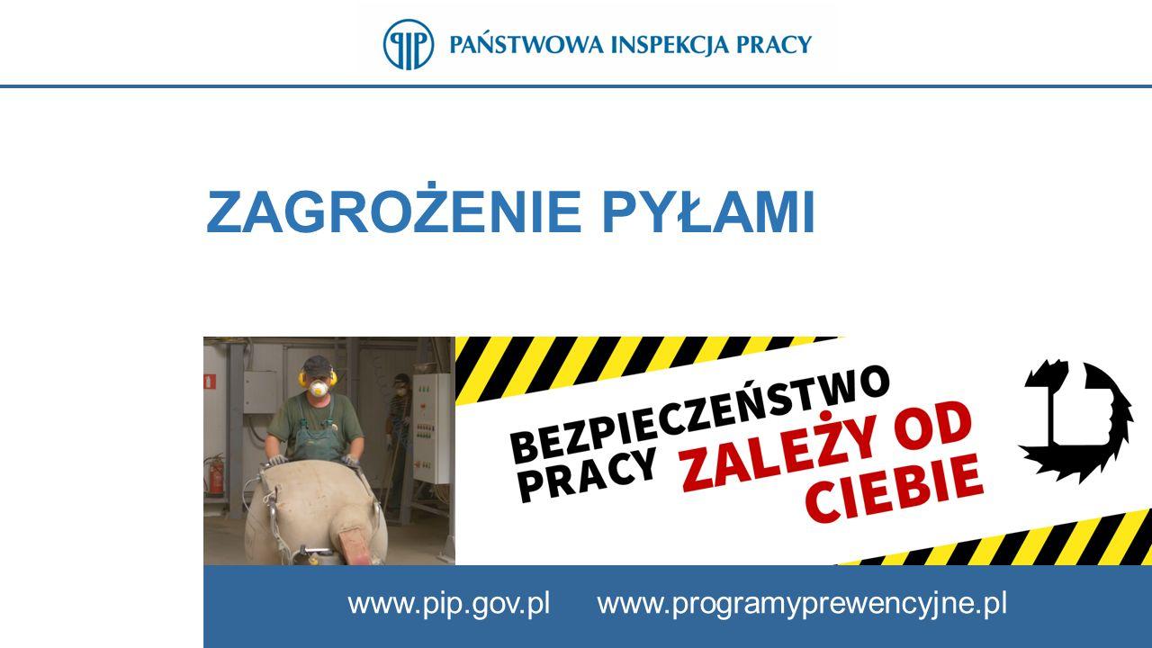 ZAGROŻENIE PYŁAMI www.pip.gov.pl www.programyprewencyjne.pl