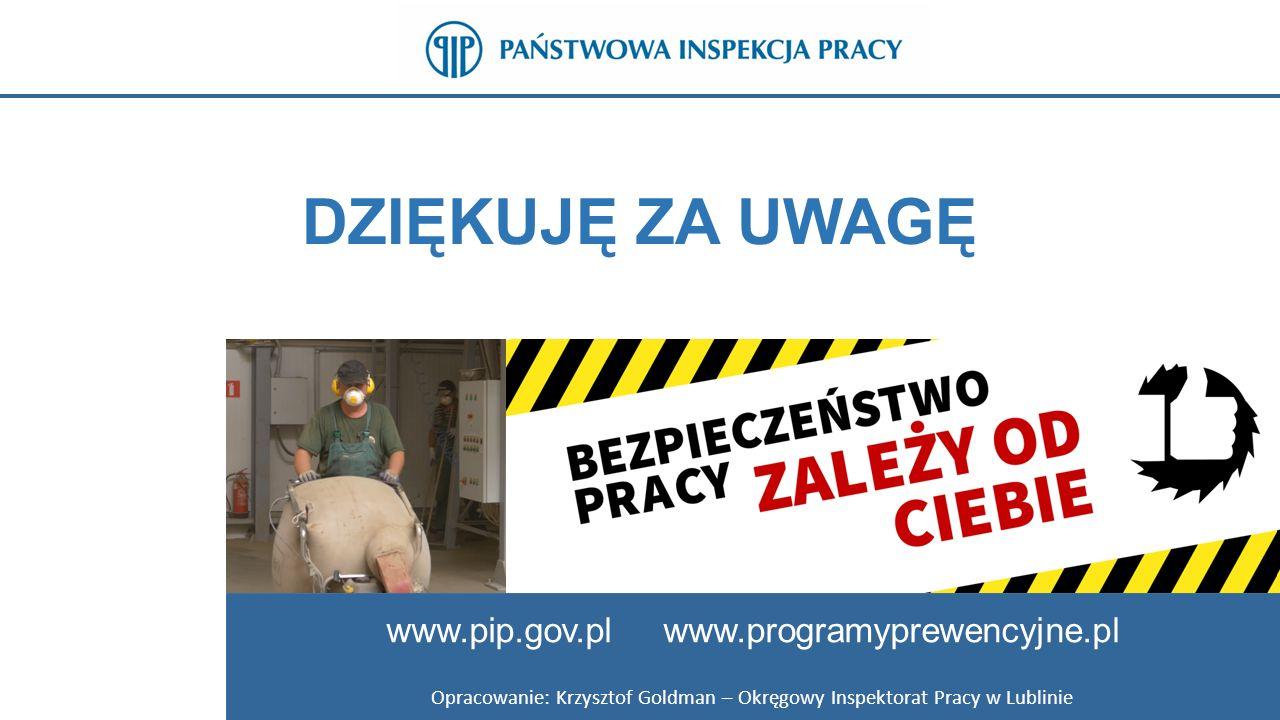 Opracowanie: Krzysztof Goldman – Okręgowy Inspektorat Pracy w Lublinie