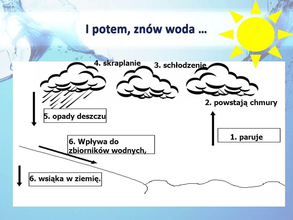4. skraplanie 3. schłodzenie. 2. powstają chmury. 5. opady deszczu. 1. paruje. 6. Wpływa do zbiorników wodnych,