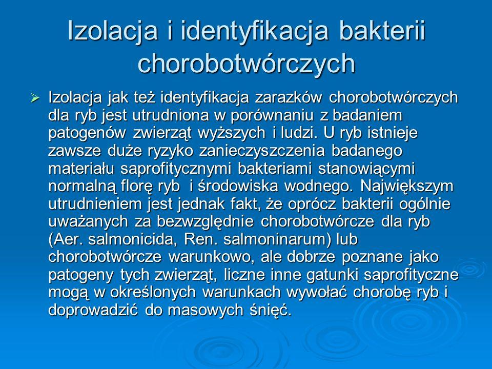 Izolacja i identyfikacja bakterii chorobotwórczych