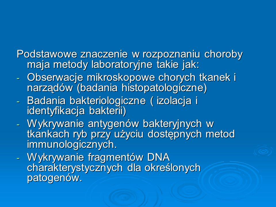 Podstawowe znaczenie w rozpoznaniu choroby maja metody laboratoryjne takie jak: