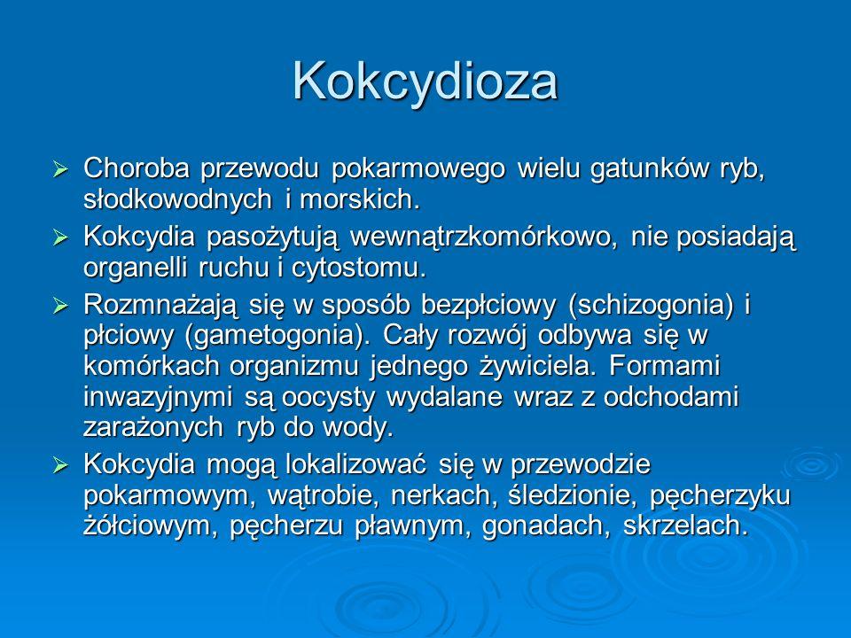 Kokcydioza Choroba przewodu pokarmowego wielu gatunków ryb, słodkowodnych i morskich.