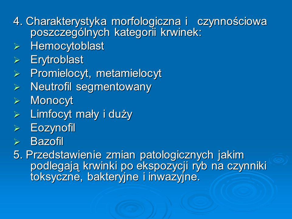 4. Charakterystyka morfologiczna i czynnościowa poszczególnych kategorii krwinek: