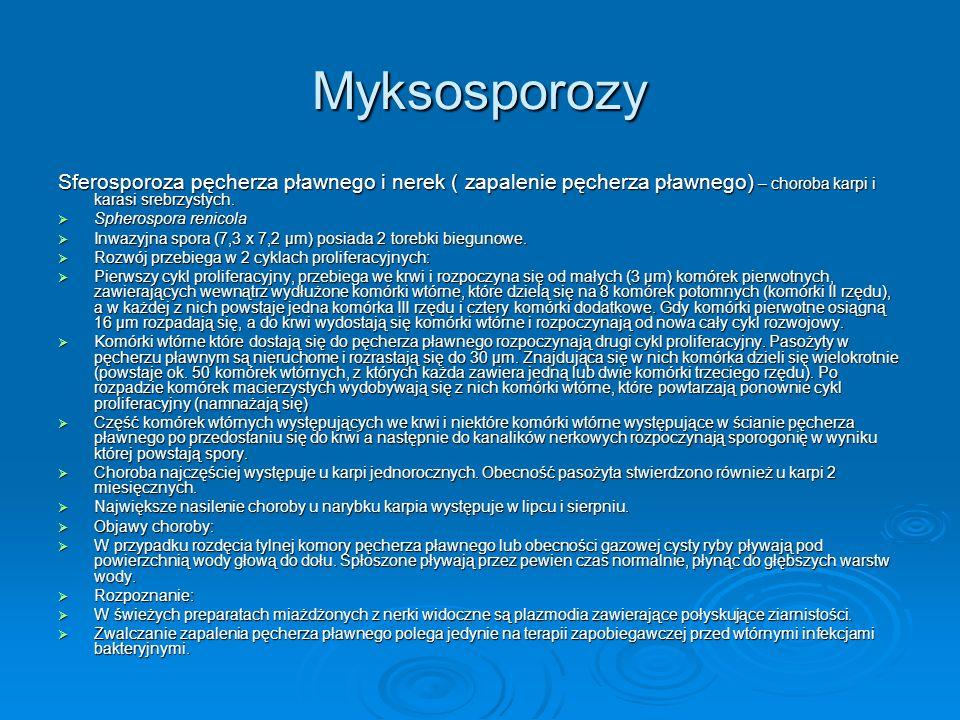 Myksosporozy Sferosporoza pęcherza pławnego i nerek ( zapalenie pęcherza pławnego) – choroba karpi i karasi srebrzystych.