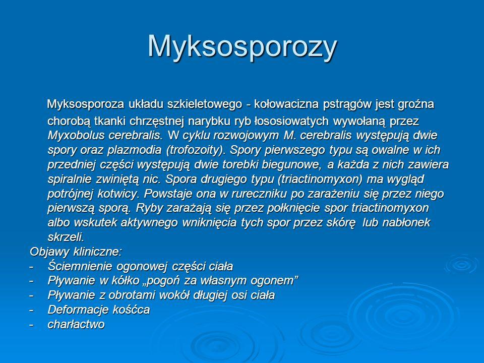 Myksosporozy